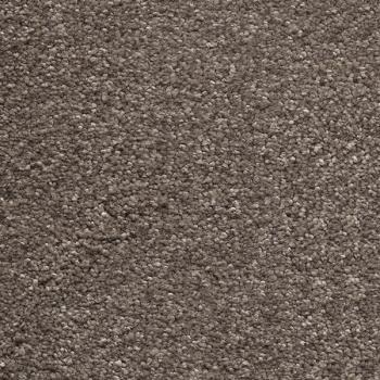 teppichboden online shop aw sirius 37 teppichboden. Black Bedroom Furniture Sets. Home Design Ideas